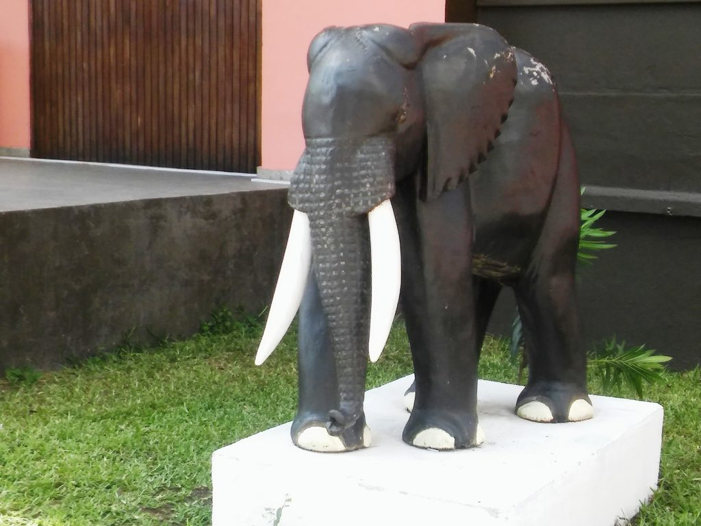 L'éléphant, animal mythique de la Côte d'Ivoire.